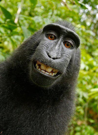 naruto-selfie