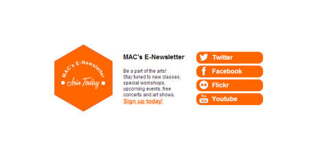 newsletter and social sign up codepen