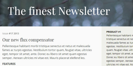 responsive email newsletter