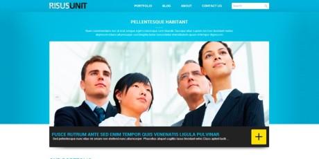risusunit finance wordpress theme