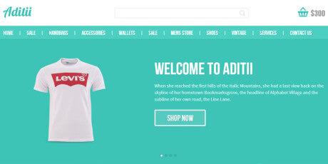 aditii flat e commerce web template