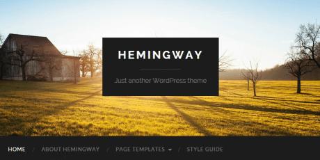 multiformat wordpress theme