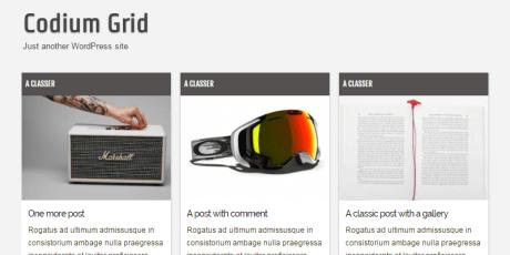 responsive grid wordpress theme