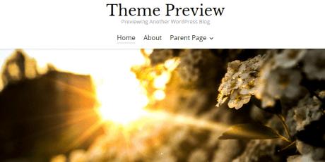 free photography blogging wordpress theme