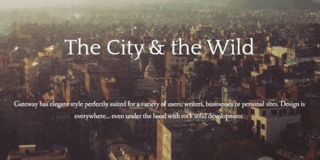 minimal bloggers writers wordpress theme