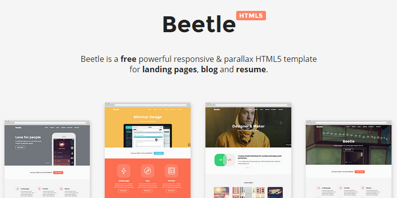 Beetle: Responsive HTML & CSS Template | Bypeople