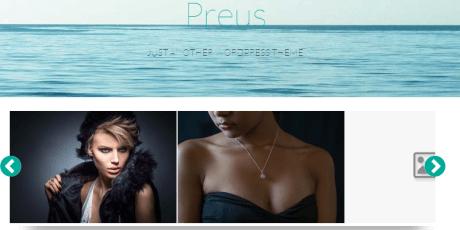 preus responsive wordpress theme