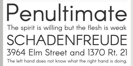 elegant contemporary sans serif typeface