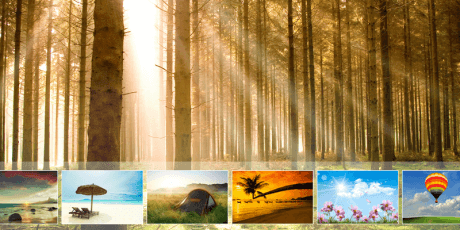 all in one jquery slider