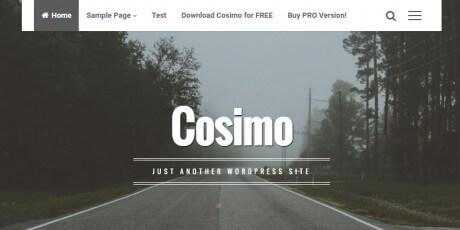 blog portfolio wordpress theme