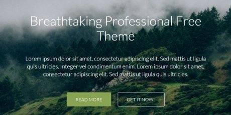 clean business wordpress theme ambition