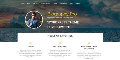 personal site wordpress theme