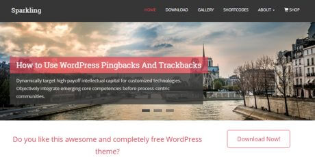 sparkling flat wordpress theme