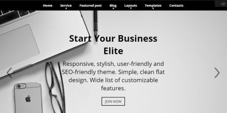 parallax business wordpress theme