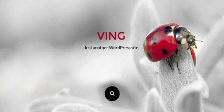 clean modern wordpress theme
