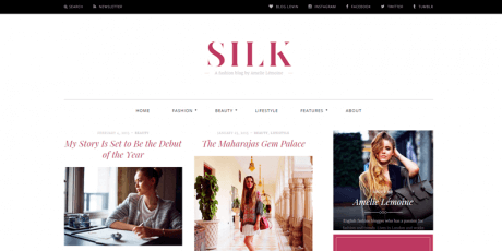 magazine wordpress theme silk