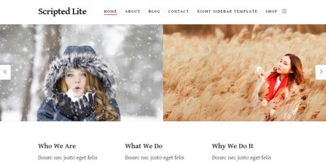 minimal wordpress theme scripted