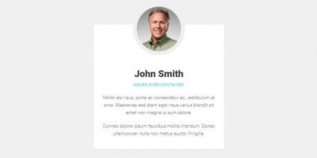 profile card hover effect