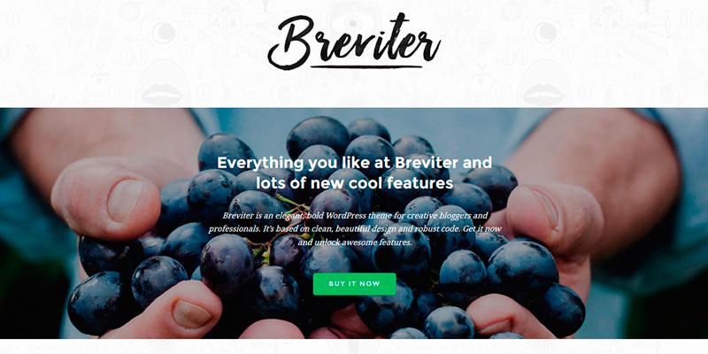 Breviter: Elegant WordPress Theme PSD Template | Bypeople