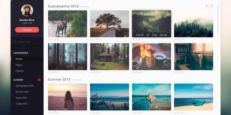 photo management application design