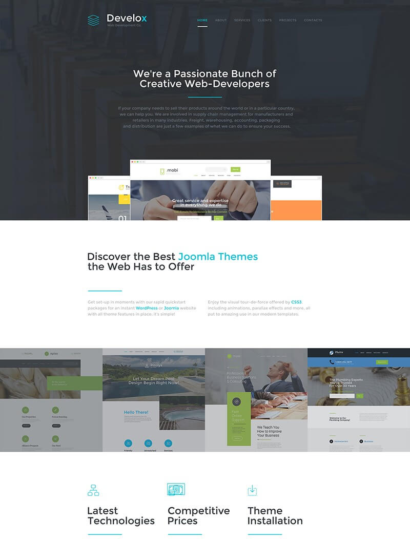 Develox Website Template