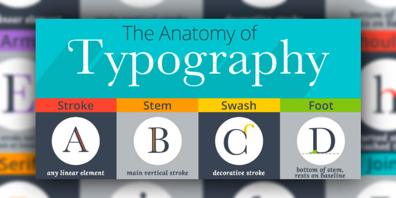 Illustrated Glossary Typographic Terms Bypeople