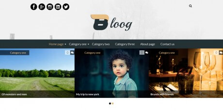 blog type wordpress theme