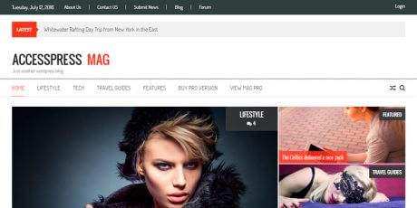 free magazine focused wordpress theme