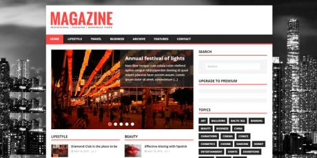 magazine lite wordpress theme