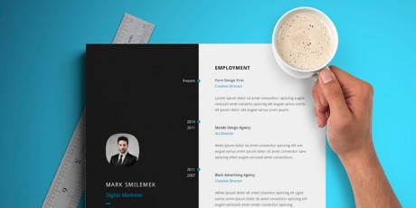 premium resume templates collection