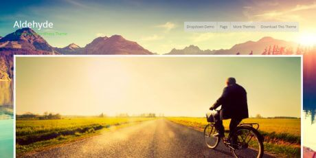 wordpress theme parallax