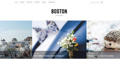 clean wordpress blogging theme