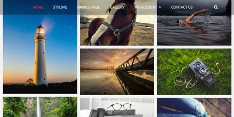 free wordpress photography focused theme