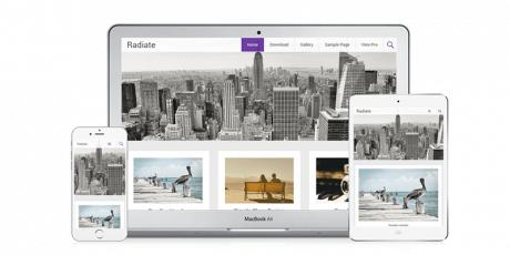 radiate responsive wordpress theme