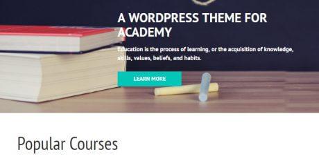 academic focused wordpress theme