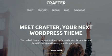 business startup free wordpress theme