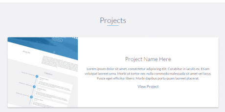 developers website template