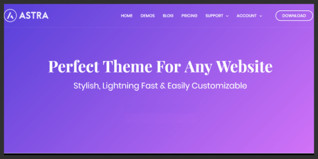 fast lightweight wordpress theme