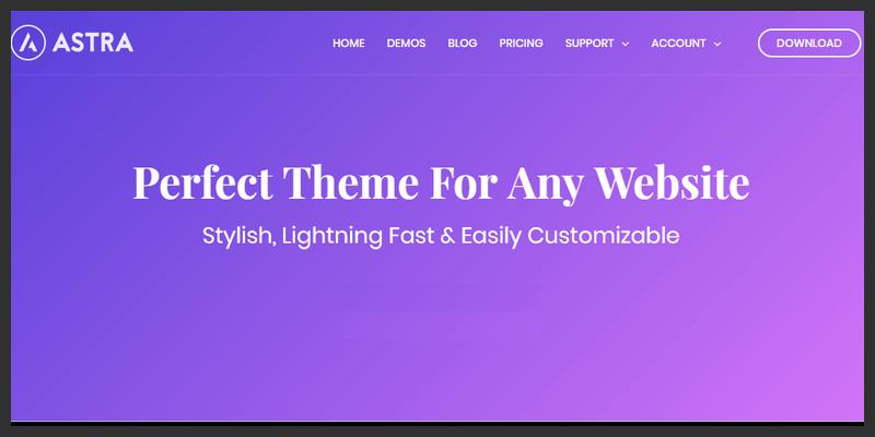 fast lightweight wordpress theme