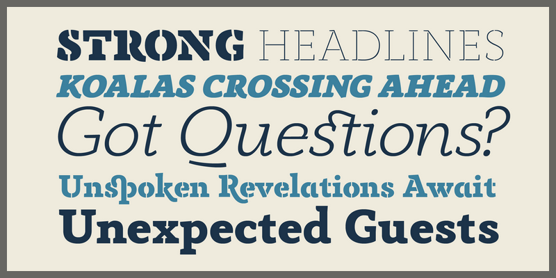 professional contemporary serif font