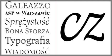 serif typeface professional print