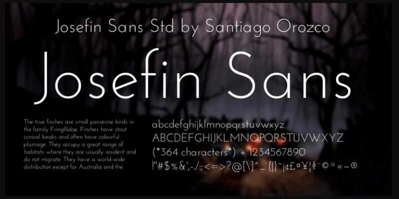 elegant sans serif typeface