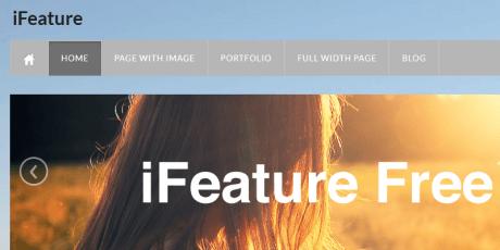 ifeature free wordpress theme