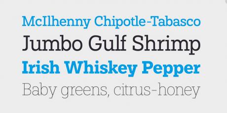 modern slab serif font